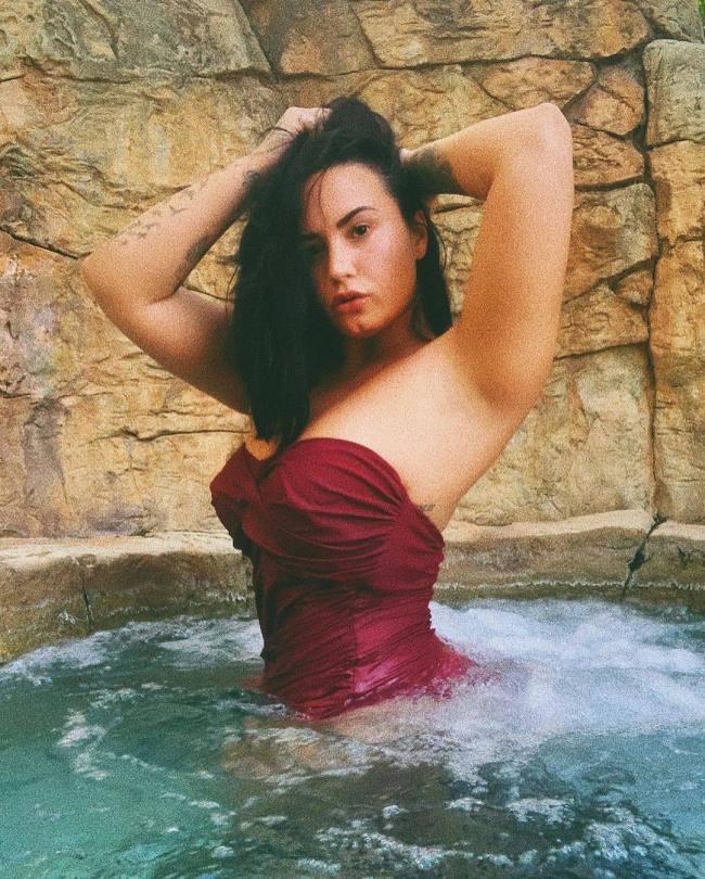 Demi Lovato In A Swimsuit