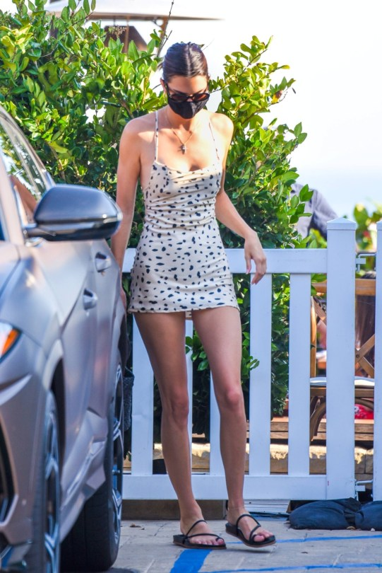 Kendall Jenner In Short Dress
