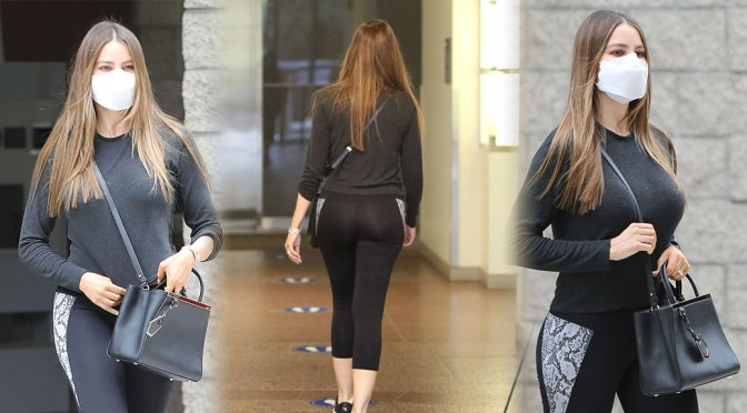 Sofia Vergara – Sexy Boobs and Ass Out in Los Angeles