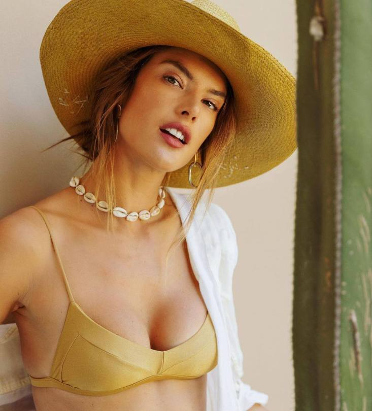 Alessandra Ambrosio Hot In Bikini