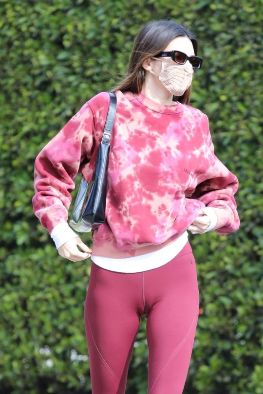 Kendall Jenner Sexy Camel Toe