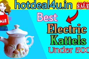 Top 5 Best Electric Kettles Under 500 in India 2021