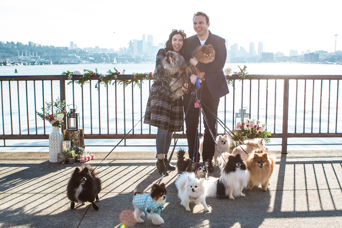 Our Engagement Story: A Pomeranian Proposal