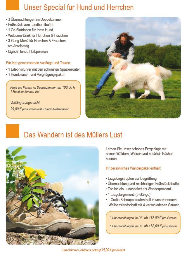 Hunde Special & Wander-Arrangement