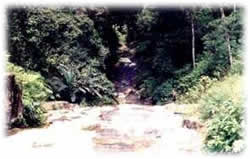 Cachoeira da Serra - Ubatuba - Hotel Mar