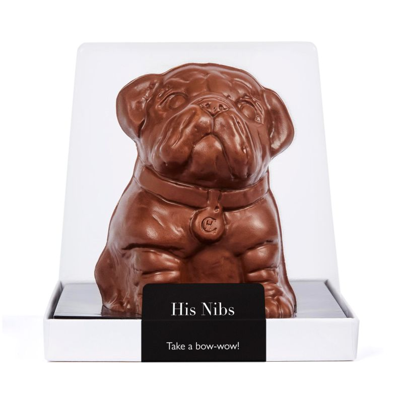 Image result for nibs the chocolate dog