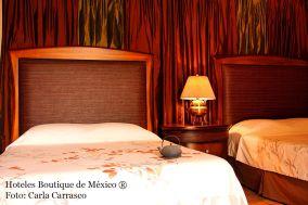 hoteles-boutique-de-mexico-hotel-la-casa-del-atrio-queretaro-54