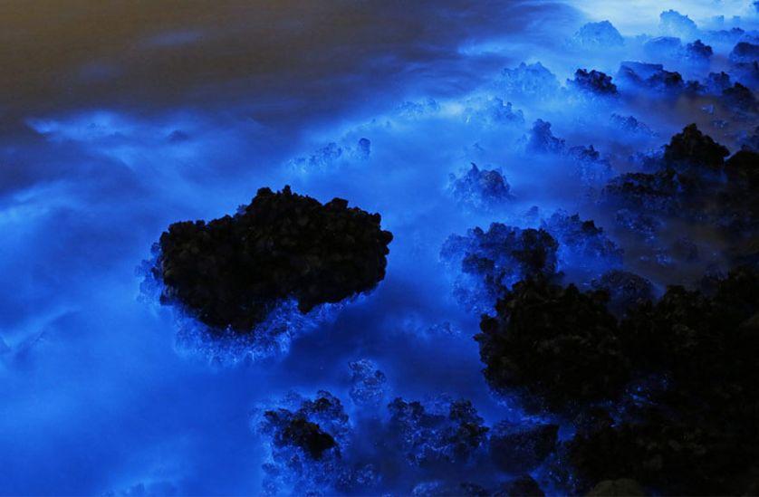 hoteles-boutique-en-mexico-estrellas-en-el-mar-descubre-la-bioluminicencia-en-isla-holbox.