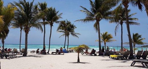 Playa y Palmeras Barceló Maya Beach