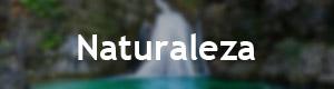 Naturaleza en la Sierra de Albacete