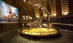 Museo del Jurásico (Colunga)
