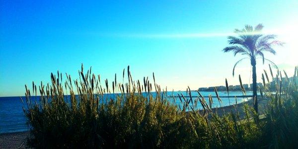 Playa dels Terrers