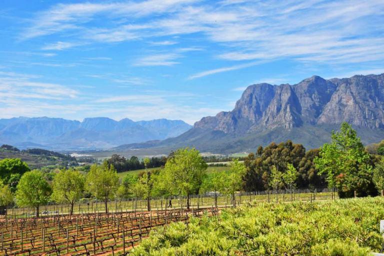 vinicola delaire graff estate com seus campos verdejantes