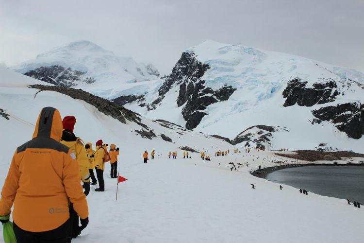 Trekking na Antártica