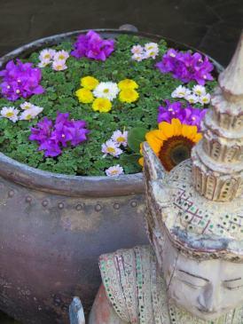 four_seasons-chiang-mai-hotelnews_traveller-1