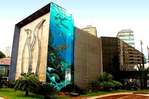Um passeio pelo Aquário de Santos