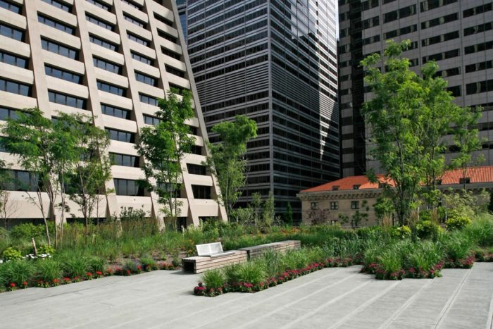 elevated acre