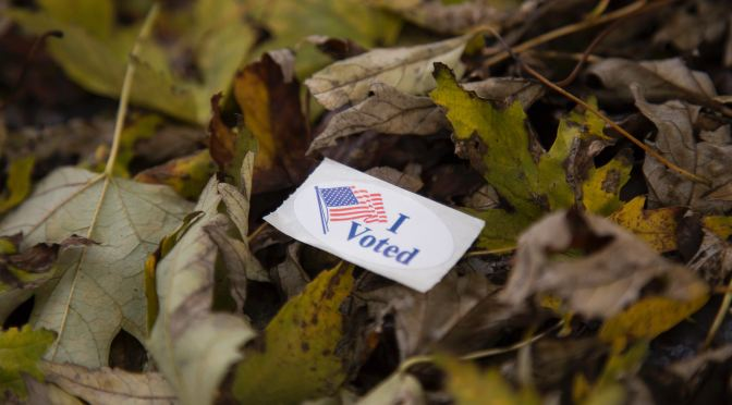 How did the Environment Fare in the Midterms?