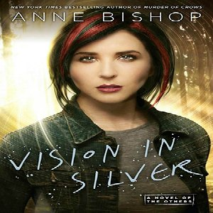 Vision in Silver book cover