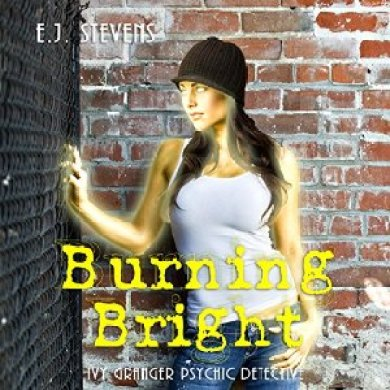 Burning Bright by E.J.Stevens