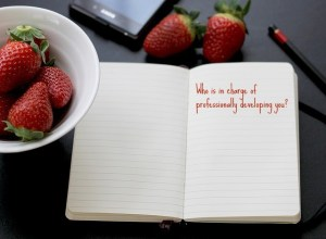 Who is in charge of professionally developing you?