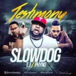 VIDEO: Slowdog - Testimony (Remix) Ft. Phyno x TJ