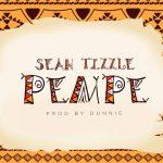 Sean Tizzle - Pempe