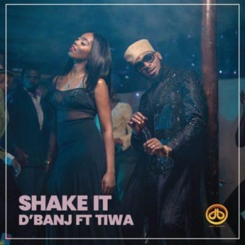 D'Banj ft Tiwa Savage - Shake It