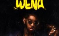 Solidstar - Wena