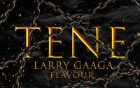 Larry Gaaga - Tene ft. Flavour