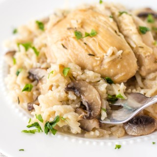 a fork scooping chicken and rice with mushrooms