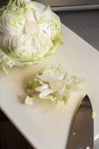 cutting bottom off a head of green cabbage