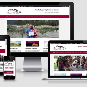 Mountain Wine Tours – Moreton Bay website development