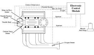 Hot Rod Handbooks: Tuned Port Fuel Injection