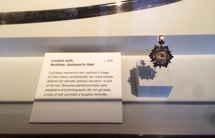 Andrew Jackson's hair