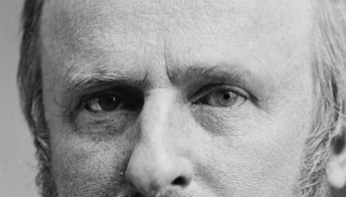 Rutherford B. Hayes's eyebrows