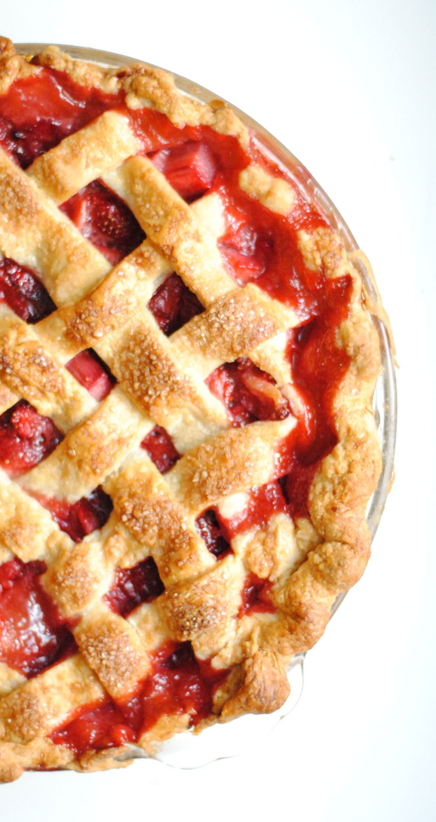 strawberryrhubarb7