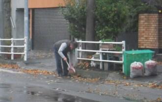 落ち葉掃除