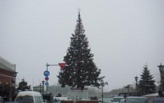 2013年のクリスマスツリー