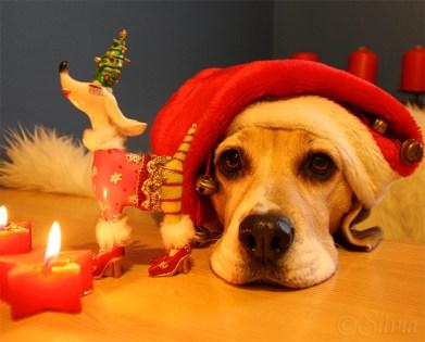 Christmas-Lissa
