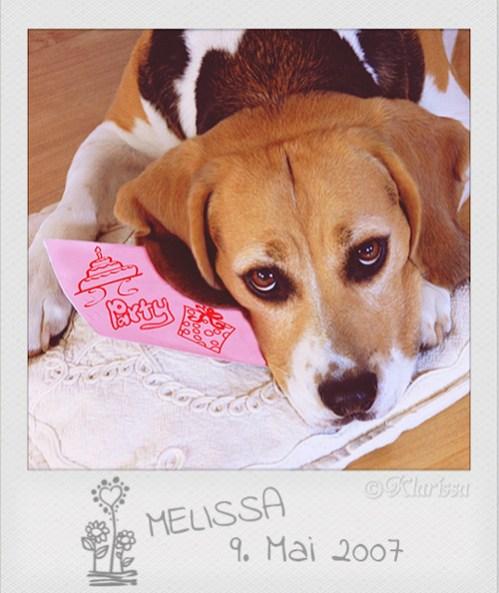 Lissa Melissa