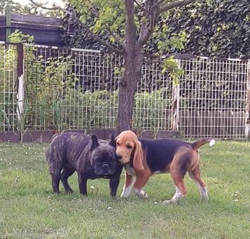 Klein Oskar und seine Freundin