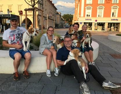 gemeinsame Stadtrunde, Eisessen, Erinnerungsfoto; Sommer 2017