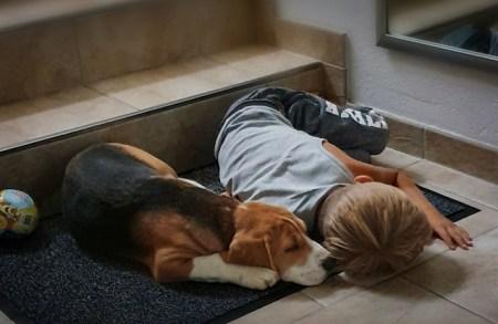 ... eingeschlafen...