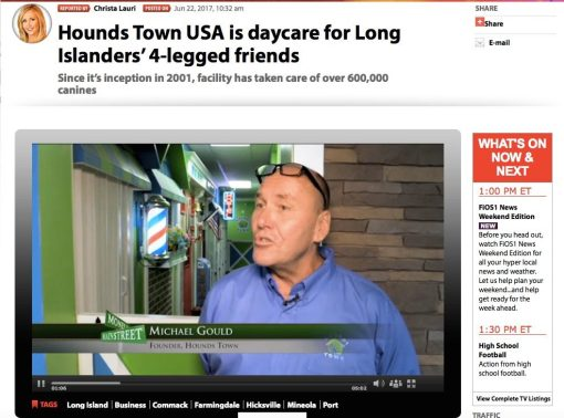 Pet Care Franchise Hounds Town USA Featured on Fios News