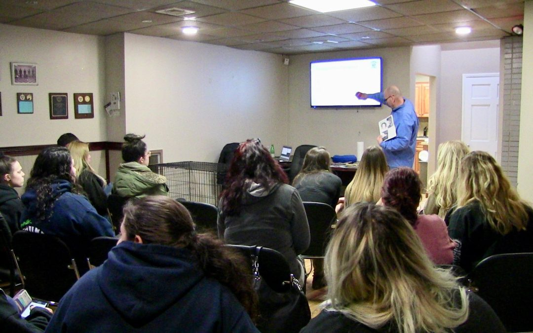 Doggy Daycare Franchise Launches Seminar Series for Franchisees