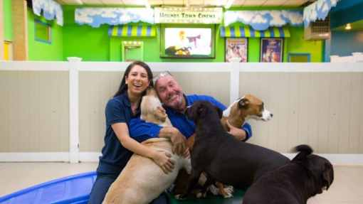 "Pet Care Business Considered ""Recession-Resilient"""