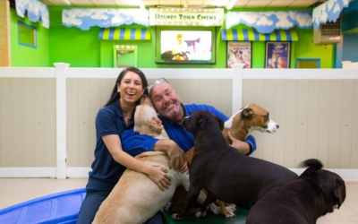 """Pet Care Business Considered """"Recession-Resilient"""""""