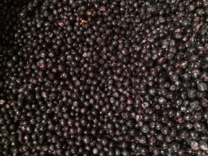 vin medoc caviar