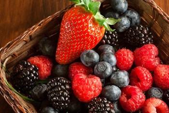 supercharged vegan snacks- organic berries